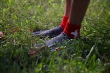 highres 11 grass